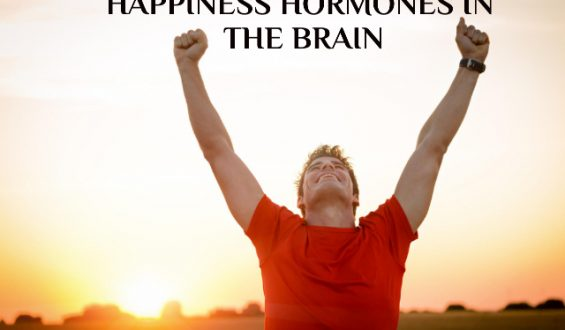 LUCK IN THE GAME, HAPPINESS HORMONES IN THE BRAIN