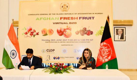 Afghan Fruit Digital Enterprise Matchmaking Occasion Hosted in India