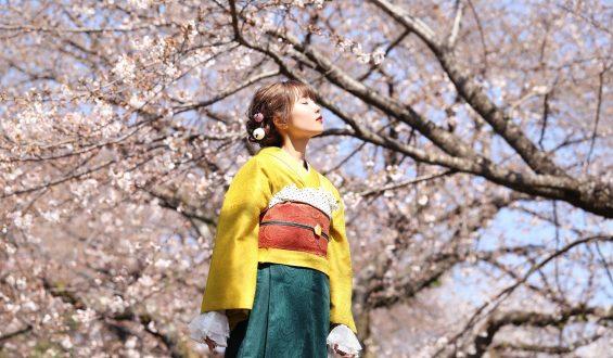 """Singing Cosplayer Hikari launched the tenth Anniversary Remix of """"Yume to Hazakura""""(by U-SKE Asada) worldwide!"""